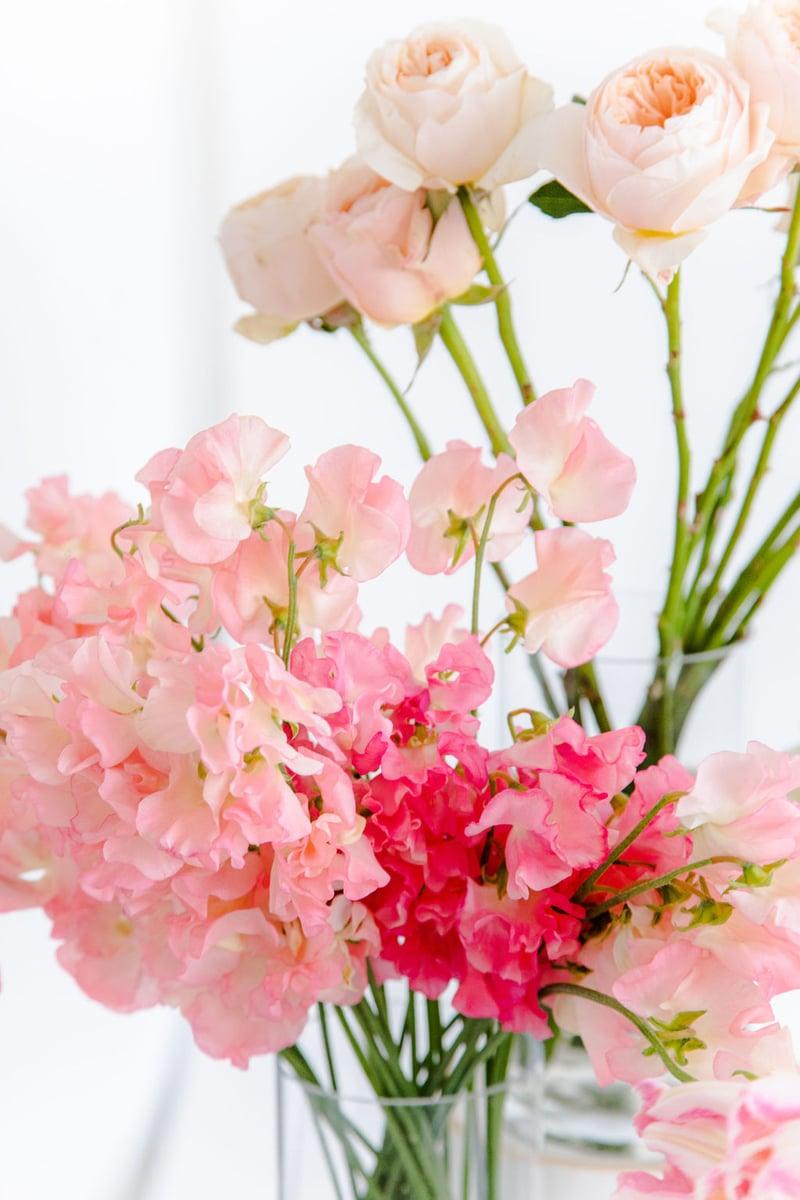 pink sweet peas and peach Juliet garden roses