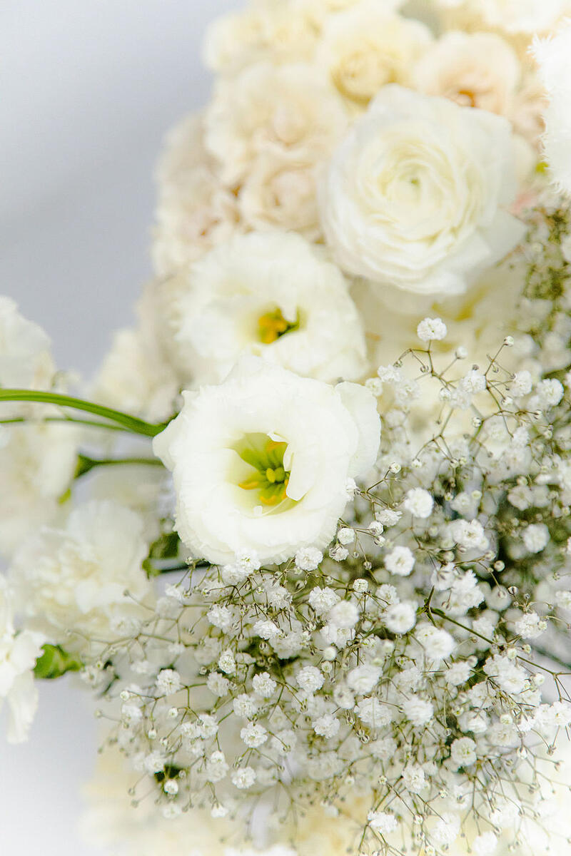 white wholesale flowers - baby's breath, lisianthus, carnations, roses