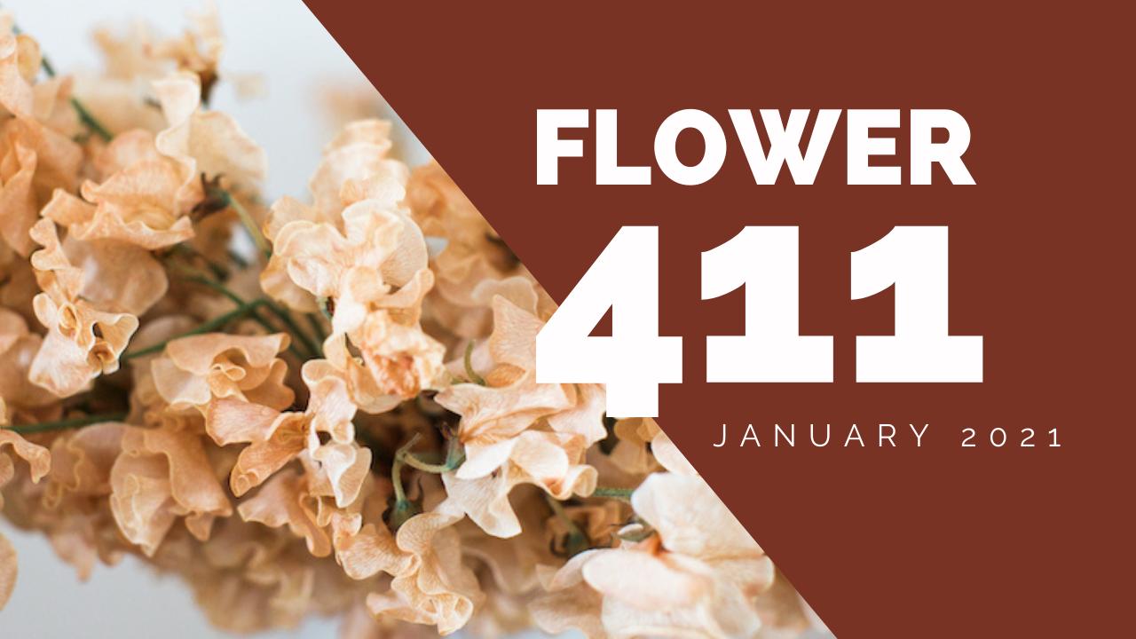 Flower-411-header-1