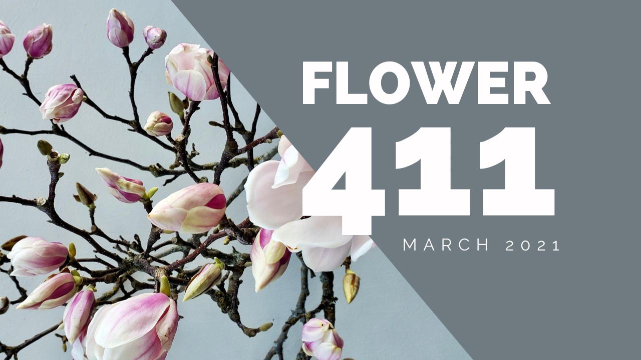 Flower-411-header-3