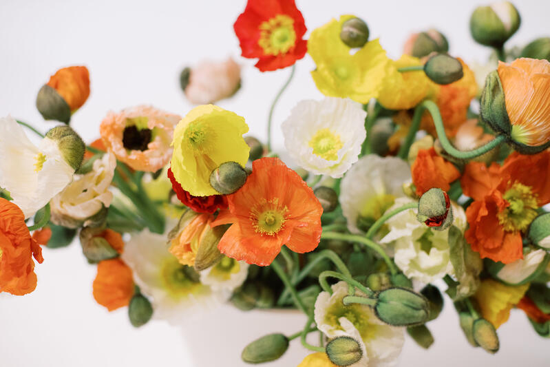 Poppies_Assorted (1)