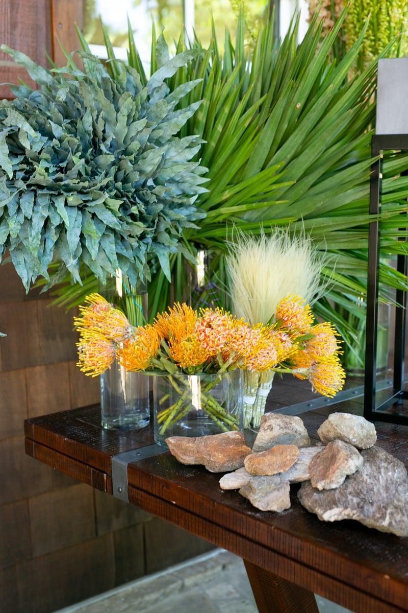 palmetto fan palm, pincushion protea, troll grass from Mayesh