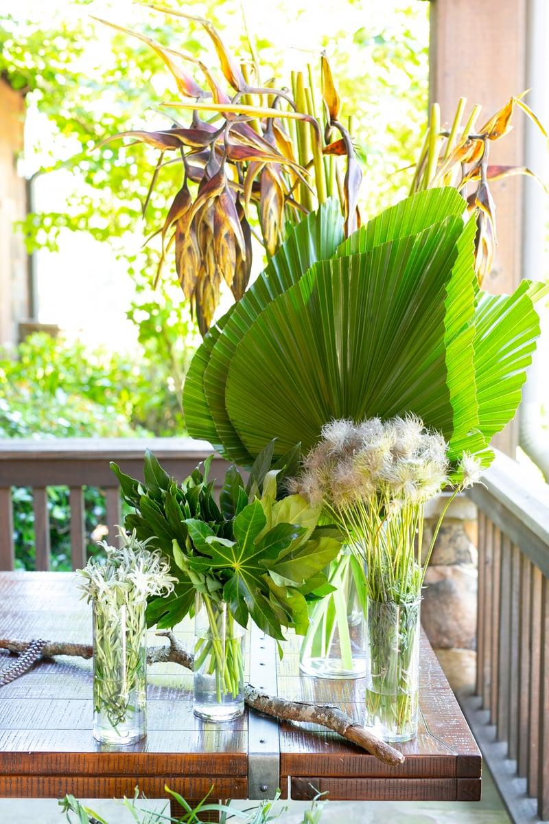 hanging heliconia, Palmetto Fan Palm, Aralia,  Pulsatilla, Livingstonia Palm