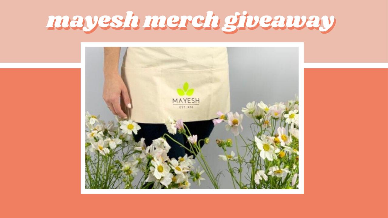 mayesh merch giveaway
