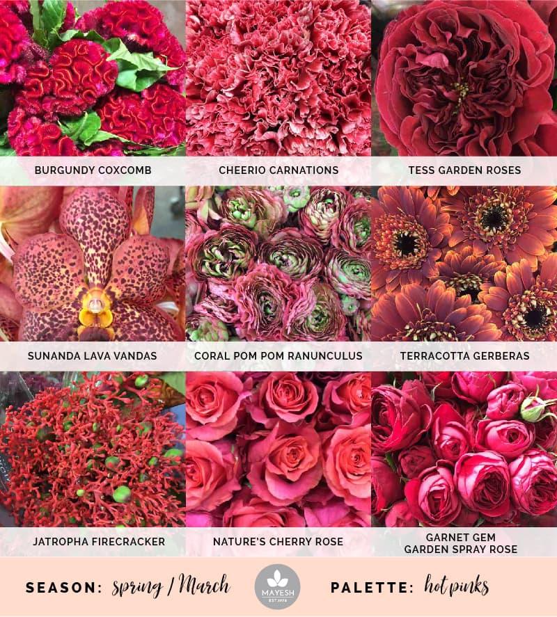 Mayesh Cooler Picks Spring Hot Pink