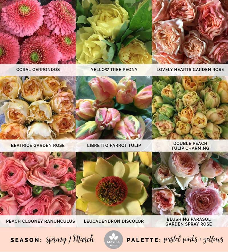Mayesh Cooler Picks Spring pastel pink yellow