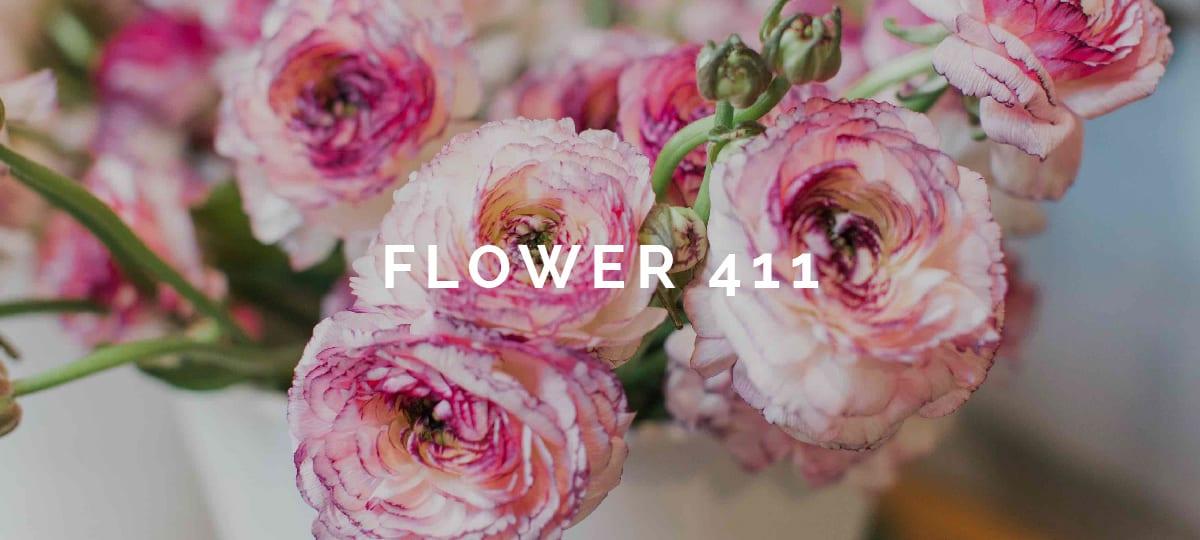 Flower 411 February 2018