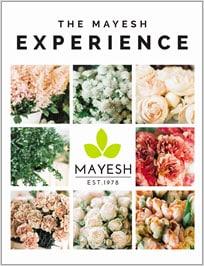 The Mayesh Experience