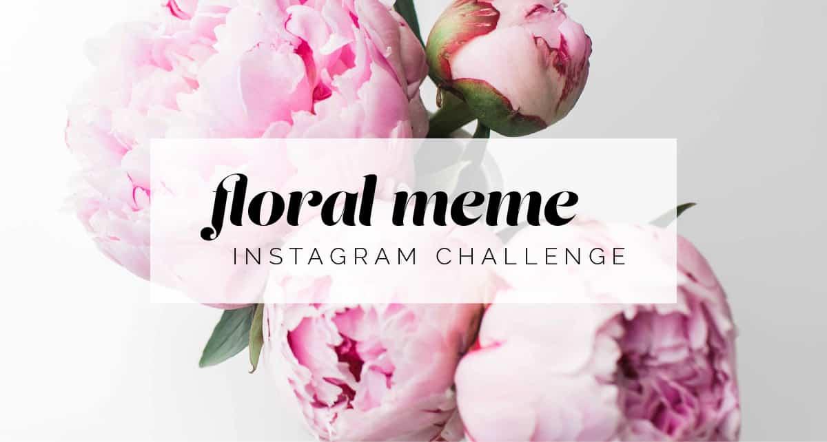 Mayesh's Floral Meme Instagram Challenge