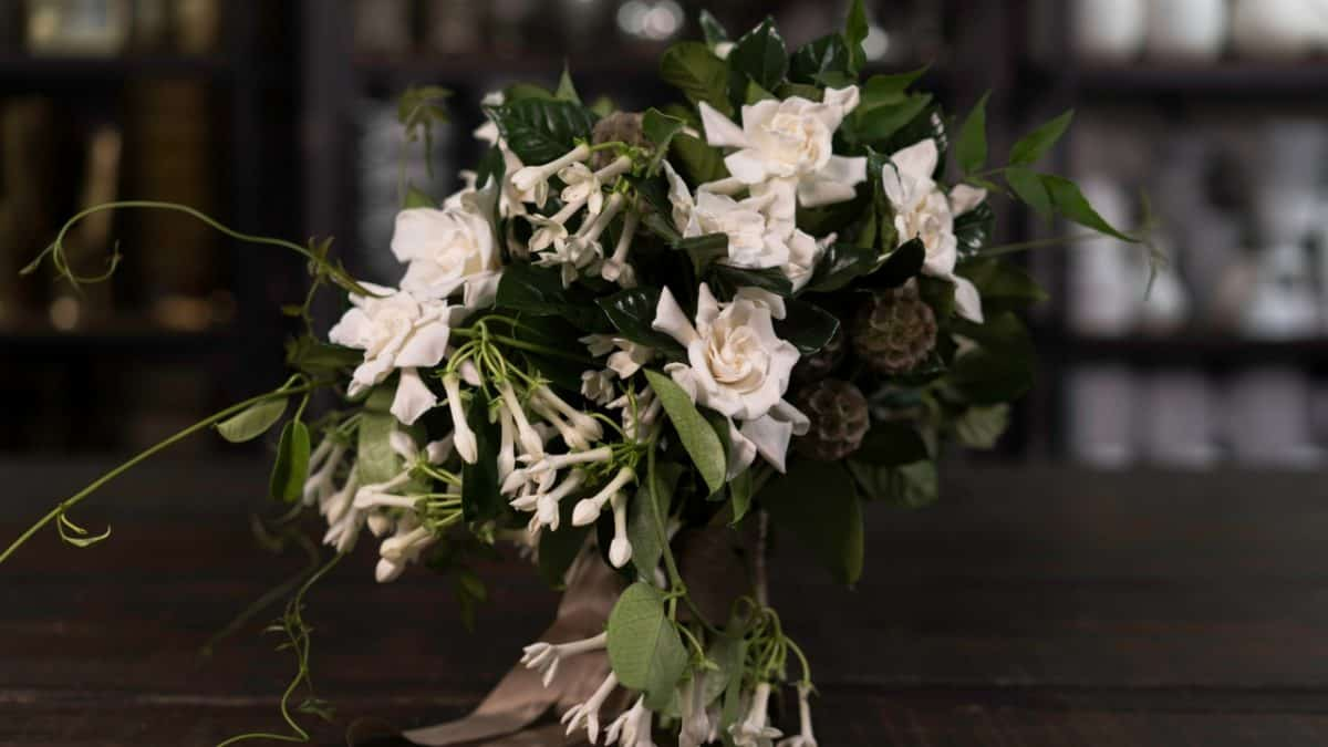 Gardenia and Stephanotis Vine Bouquet