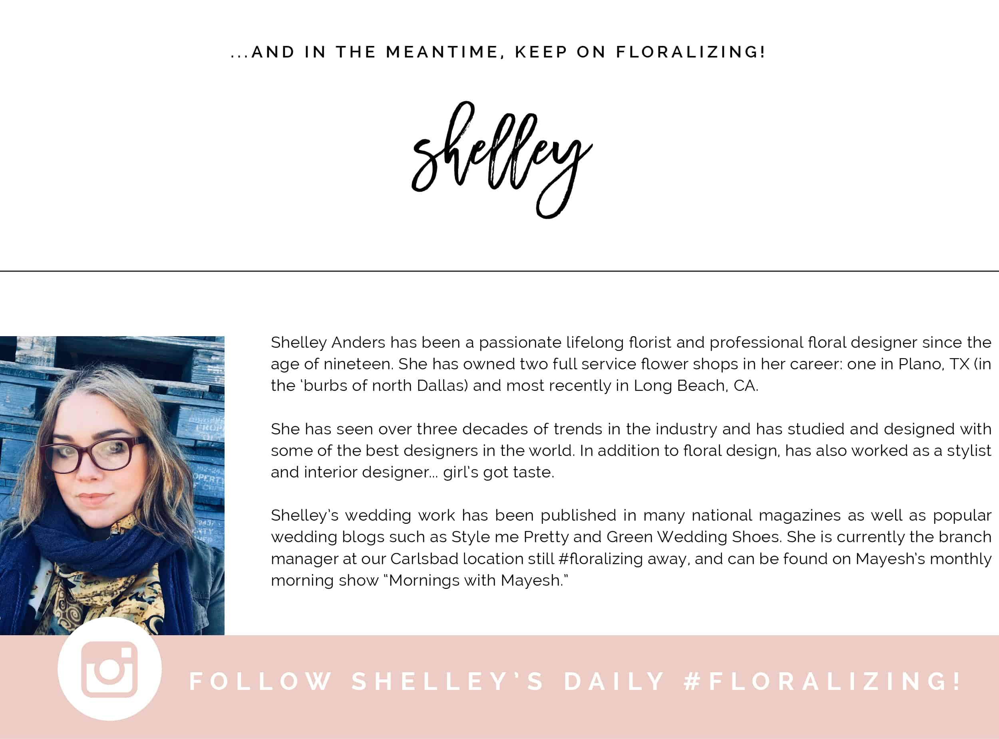 #beyondthegram , Beyond the 'Gram , Shelley Anders
