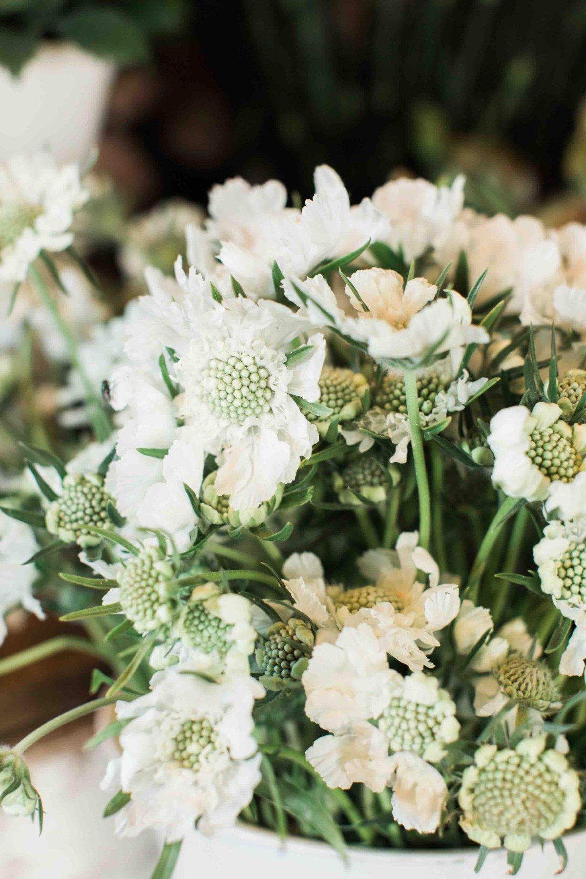 MDS Flower Workshop Carlsbad
