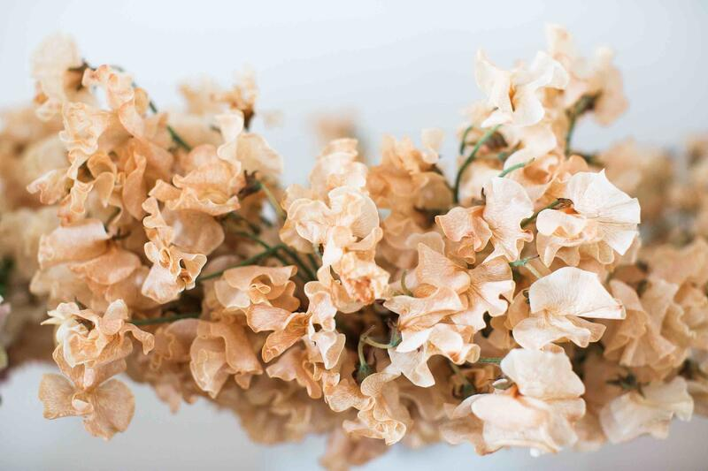 Mayesh Luxe Blooms March