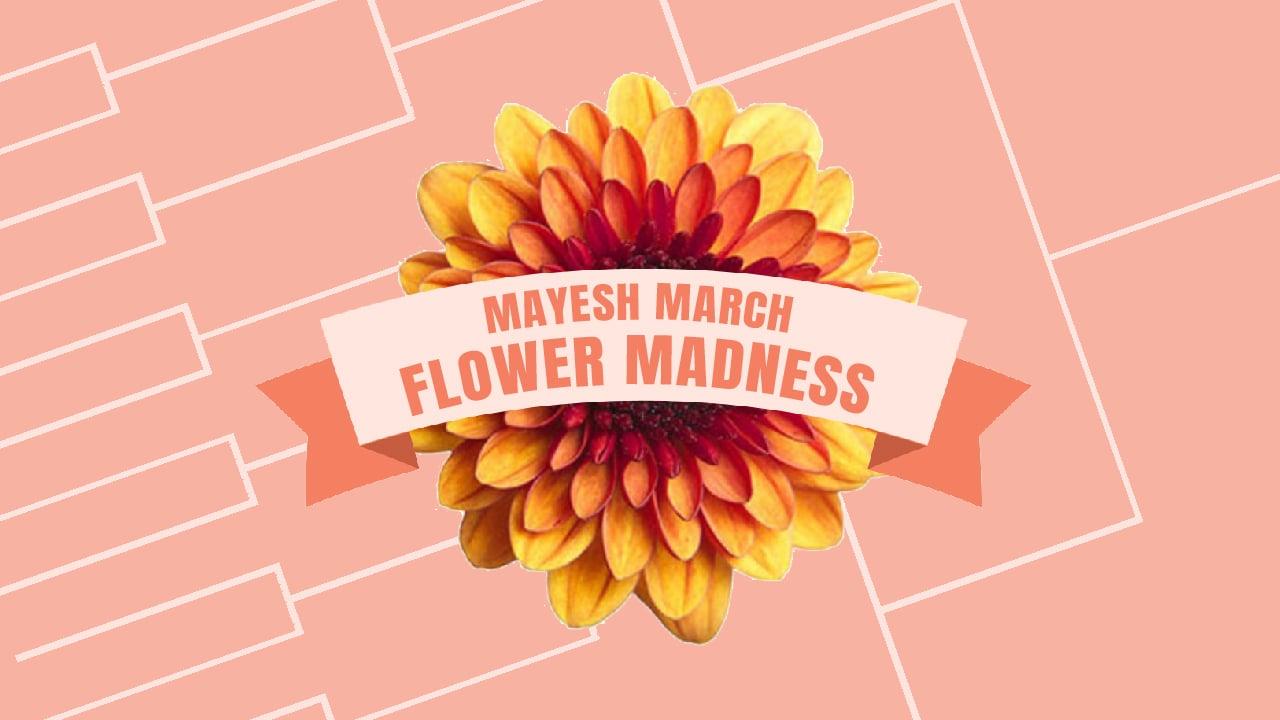 Flower-Madness-blog-01