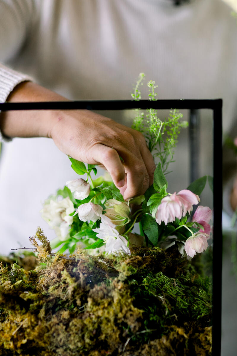 Shean Strong designing floral terrarium with helleborus, pennycress and sheet moss