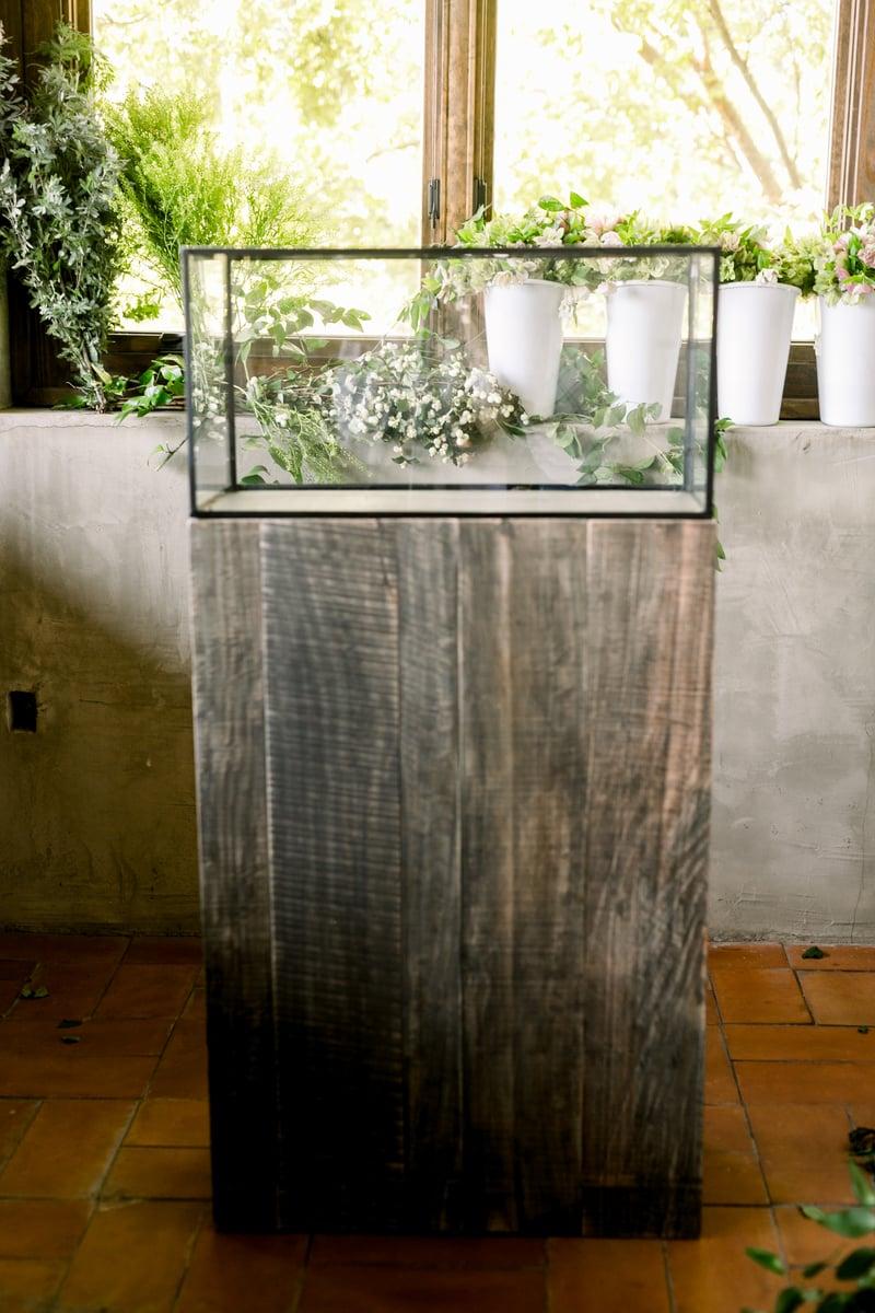 glass terrarium and helleborus, white snow berry, acacia foliage, pennycress, southern smilax