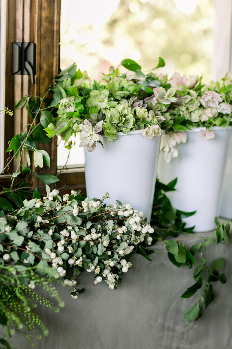 Mayesh products including white snow berry and helleborus
