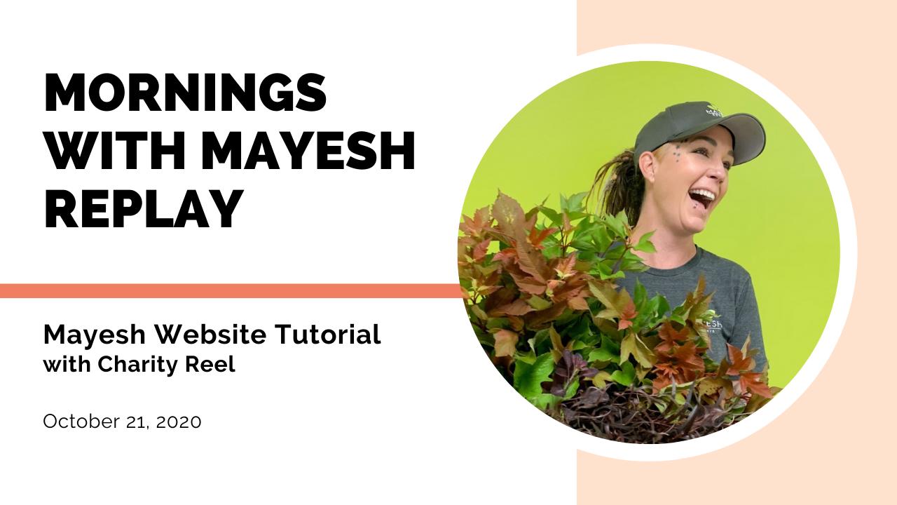 Mayesh Website Tutorial and Walk-Through