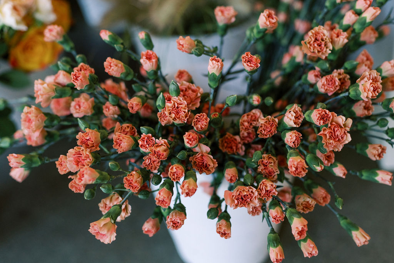 Mayesh Design Star workshop featuring peach mini carnations