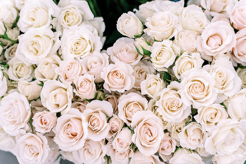 white majolika spray roses at the Mayesh Design Star Workshop in Columbus, OH