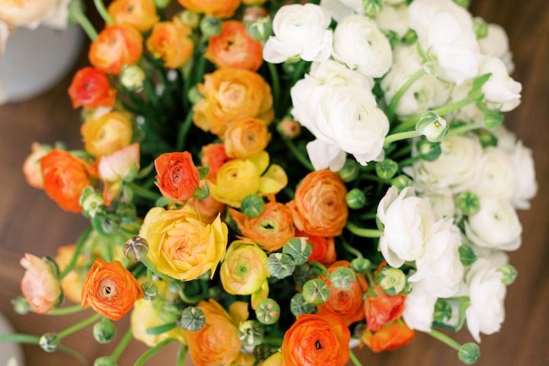 orange ranunculus and white ranunculus