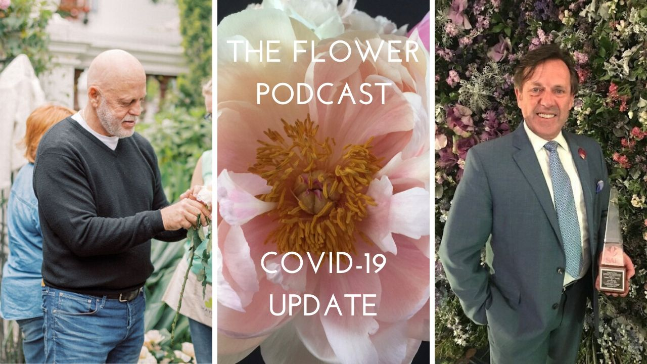 COVID-19 Floral Industry Update, The Flower Podcast