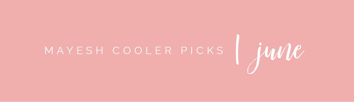 Mayesh Cooler Picks